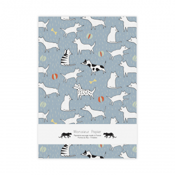 Notebook M Cats and dogs