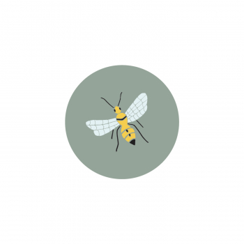 Badge Abeille