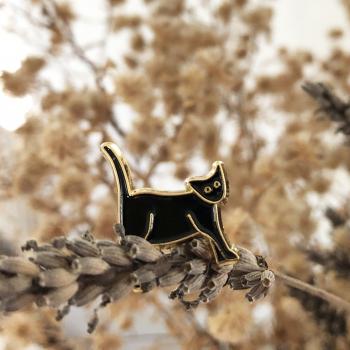 Pin's Meow